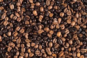 Foto op Canvas koffiebar Gracnos de café de diferentes tuestes