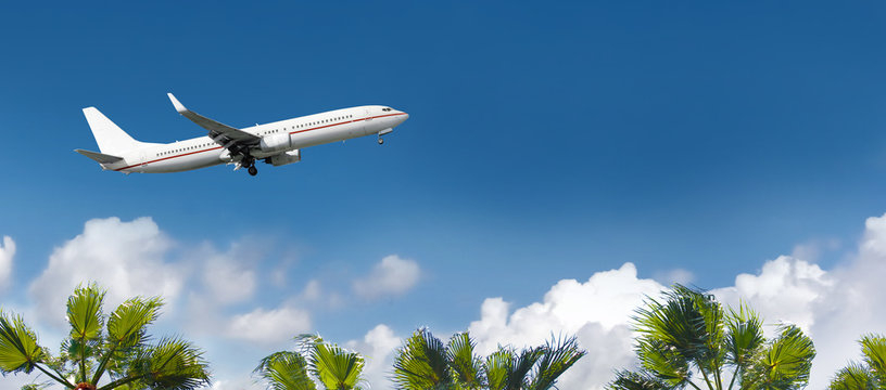 White airplane flying above the palm trees.