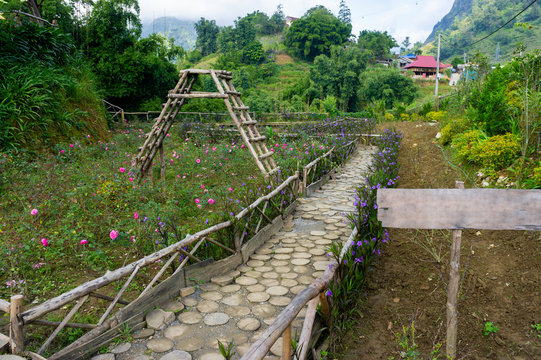 The path in the garden of wooden round logs. Wood texture. In the park to protect plants from people walking Walk through the flower garden. Sapa, Vietnam
