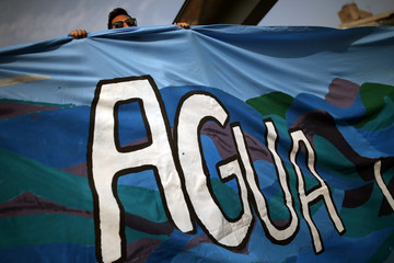 A Greenpeace activist takes part in a demonstration to ask the government to protect water resources in Santiago