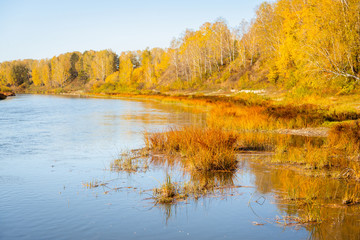 Foto op Canvas Meloen Beautiful river in sunshiny morning. Autumn landscape.