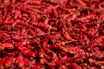 Canvas Prints Hot chili peppers macro dried red hot chili peppers