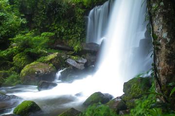 Foto op Canvas waterfall in deep forest