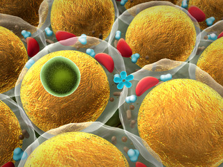 Medicine Bacteria and virus Picture