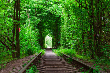 Deurstickers Groene a railway in the spring forest tunnel of love
