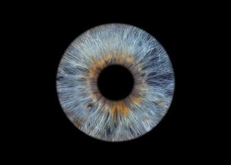 Printed roller blinds Iris blue eye