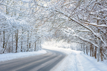Road in winter forest. Scenic view of tunnel with snowy trees. Turn of road in woods after snowfall.