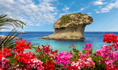 Wall mural Landscape with Il Fungo of  Lacco Ameno, coast of Ischia island, Italy