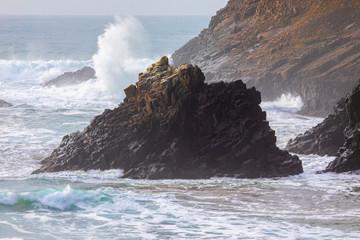 Pacific Ocean Waves Breaking on the Rocks Near Beach