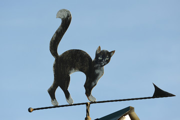 A wind vane in the form of a cat indicating the cardinal points. Metal product