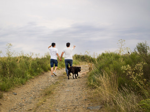 Young homosexual couple walking by the hand with two dogs