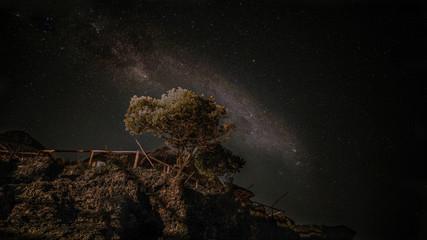 Foto auf Leinwand Sansibar Nachthimmel am Equator im Afrika Tansanien Sansibar