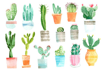 Cactus watercolor hand draw illustration isolated on white background.