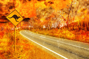Wall Mural - Bushfires in Australia. Warning kangaroo crossing sign on country road with Australian forest fire on background. Conceptual: save kangaroos, global warming, natural disaster, climate change.