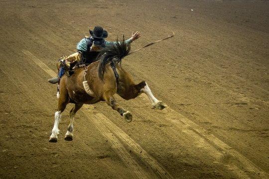 rider on horse