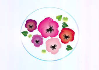 パンジー春の花ピンク系の花びらのイラストブルー背景素材