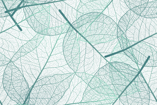 Seamless pattern with leaves veins. Vector illustration.