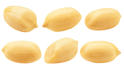peanut isolated on white background, clipping path, full depth of field Wall mural