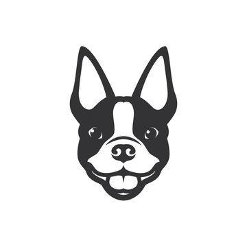 Boston terrier dog - vector illustration