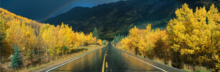 This is the Million Dollar Highway in the rain. The road is dark and wet. There are aspen trees with gold leaves on either side of the road. Fototapete