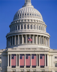 U.S. Capitol and American flags
