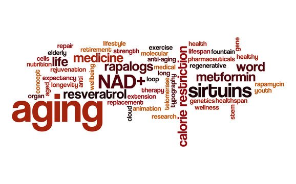 Aging word cloud. Typography.