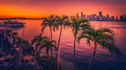 miami florida sunset bridge buildings view tropical palm sky landscape sun ocean island nature tree