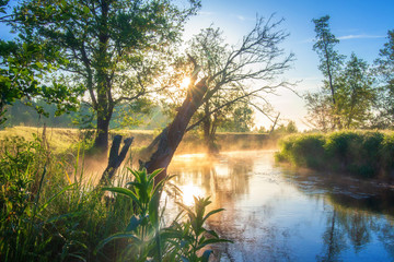 Amazing scenery sunny morning on river. River is surrounded of forest, green fields, lonely trees in summer Fototapete