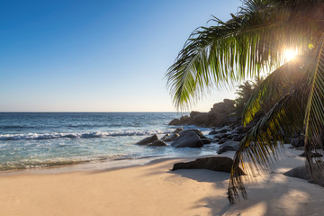 Fototapete - Sunset at exotic tropical beach with coco palms and turquoise sea in exotic Paradise island.