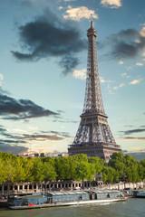 Poster de jardin Tour Eiffel Eiffel Tower in Paris, France