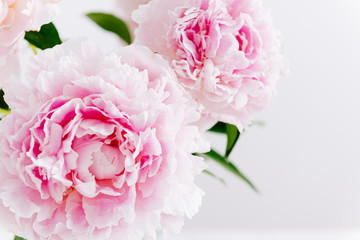 Beautiful pink peony bouquet on white background. Spring background, romantic present. Close up. Poster, greeting card, floral background concept