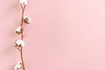 Border frame made of cotton branch on pink background