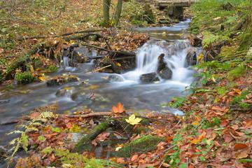 Bergbach im Thüringer Wald