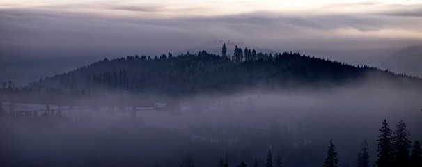 Poster Morning with fog Winter forest in dramatic sunrise with fog in the Carpathians, Romania.