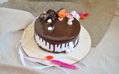 Chocolate sponge cake on a backing
