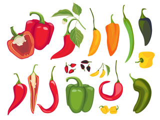 Hot peppers. Mexican chile fresh vegetarian food spices paprika cayenne exotic products vector. Illustration mexican chili, mexico pepper, hot paprika