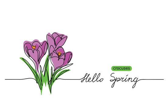 Crocuses blossom vector sketch, doodle.  Hello Spring lettering. Crocuses web banner, illustration, border, card, background.