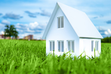 The concept is far from the bustle of the city. The model of the house stands on the grass. Architectural project. Farmhouse 3D model of the house. Concept - buying a house. Mortgage. Real estate.