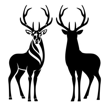 graceful deer stag with large antlers standing and looking en face - black and white vector outline and silhouette