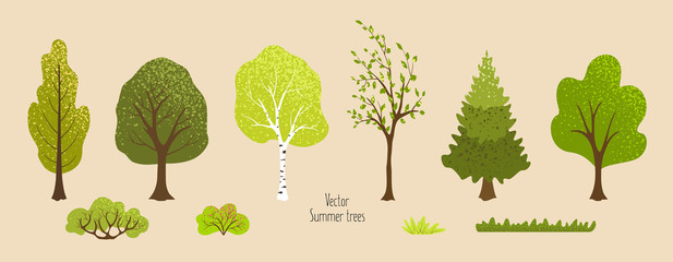 Summer trees, bush, grass. Set of plants for background, banner, wallpaper, cover, postcard, ecology poster. Elements for vector flat design