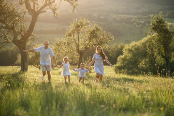Fototapeta Young family with two small children walking on meadow outdoors at sunset. obraz