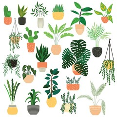 Collection of hand drawn indoor house plants on white background. Collection of potted plants. Colorful flat vector illustration