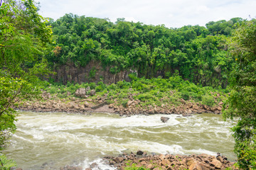 Iguazu river and jungle at the Iguazu National Park (Puerto Iguazu, Argentina)