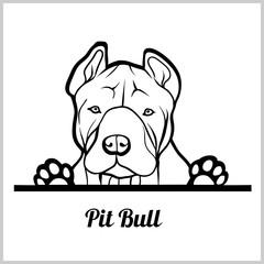 dog head, Pit Bull breed, black and white illustration