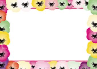 パンジーのカラフルな花の背景素材横長のフレーム