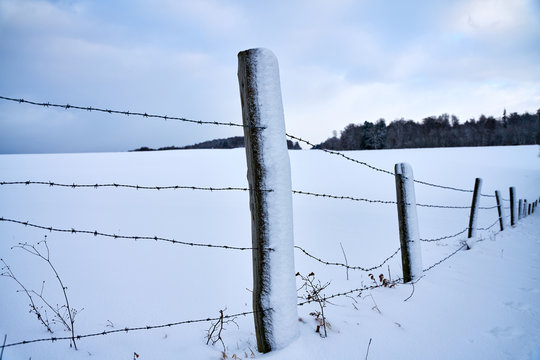 fence posts with barbed wirde in winter with snow