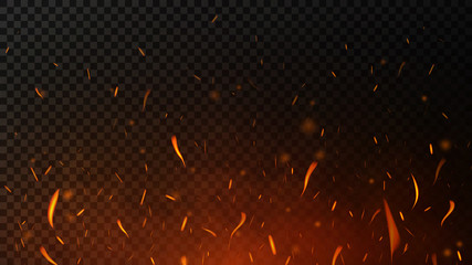 Fire sparks on dark transparent background. Flying up sparks, burning fire particles with smoke texture. Realistic flame effect