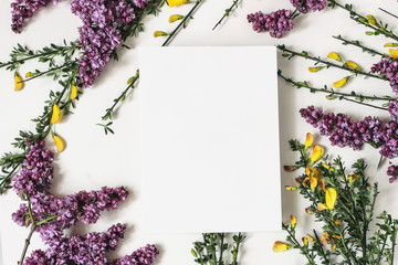 Poster Floral Spring botanical floral composition. Greeting card mockups scene. Decorative frame, banner made of purple lilac, yellow broom Cytisus flowers and branches. White table background. Flat lay, top view.