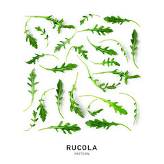 Rucola leaves collection and creative pattern.