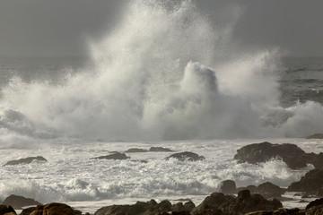 Rocky beach splash